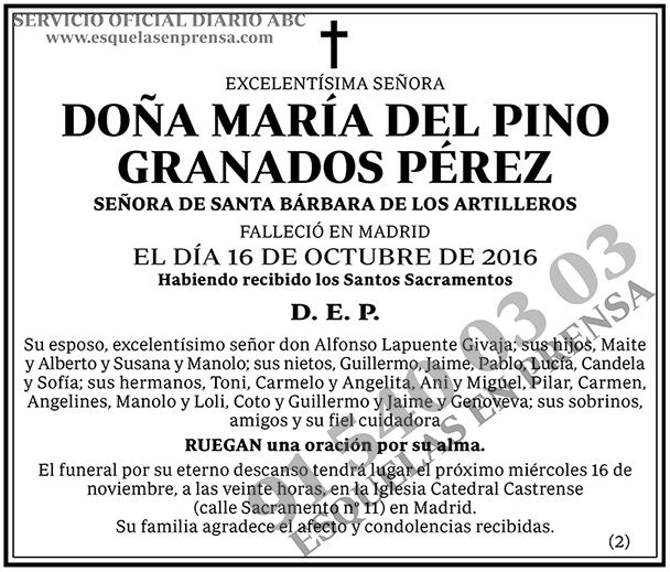 María del Pino Granados Pérez